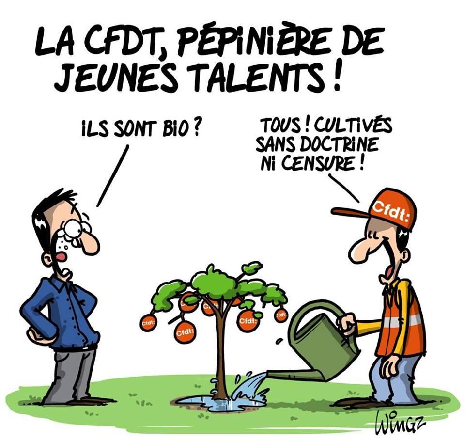 CFDT-pépinière